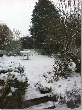 snow (15)